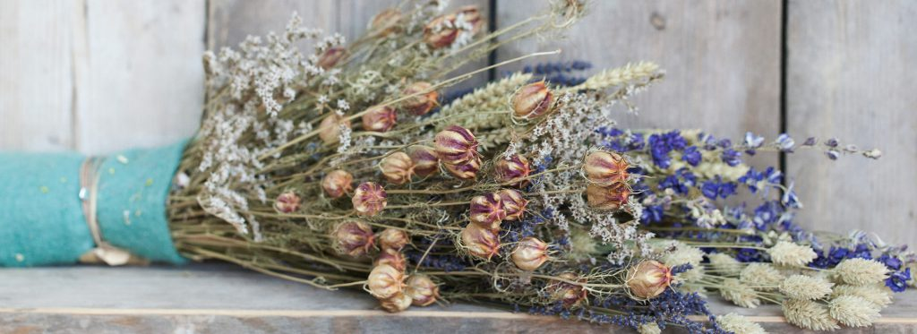 Supplier of dried flowers
