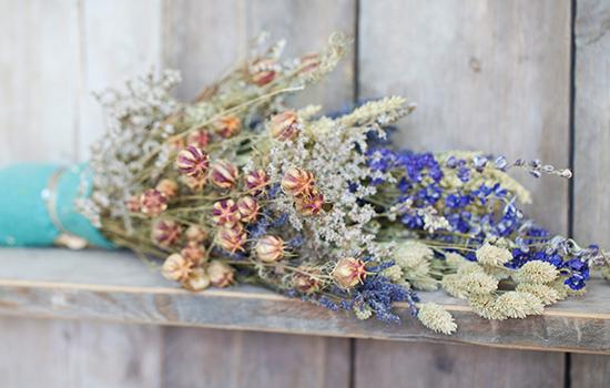Lamboo Dried & Deco Dutch Dried Flowers