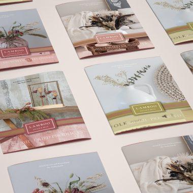 Bewonder Onze Nieuwe Dutch Dried Flowers, Preserved, Dried Flowers En Dried Concepts Catalogi