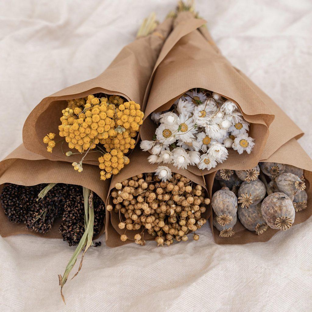 Lamboo Dried & Deco eco-friendly range dried flowers